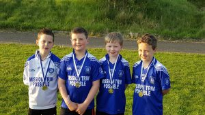 Community Games County Champions