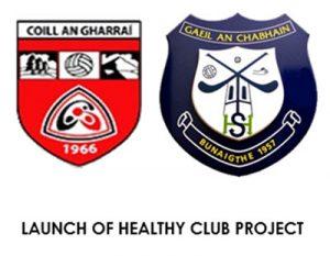 GAA Healthy Clubs